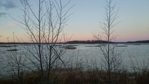 Invik vid Norrbottenskusten